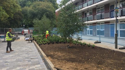 Battersea public space hard landscaping renovation