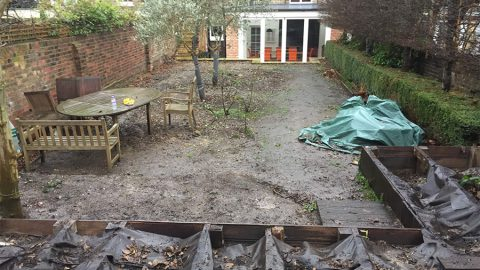 Holland Park garden before