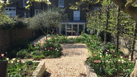 Holland Park garden after